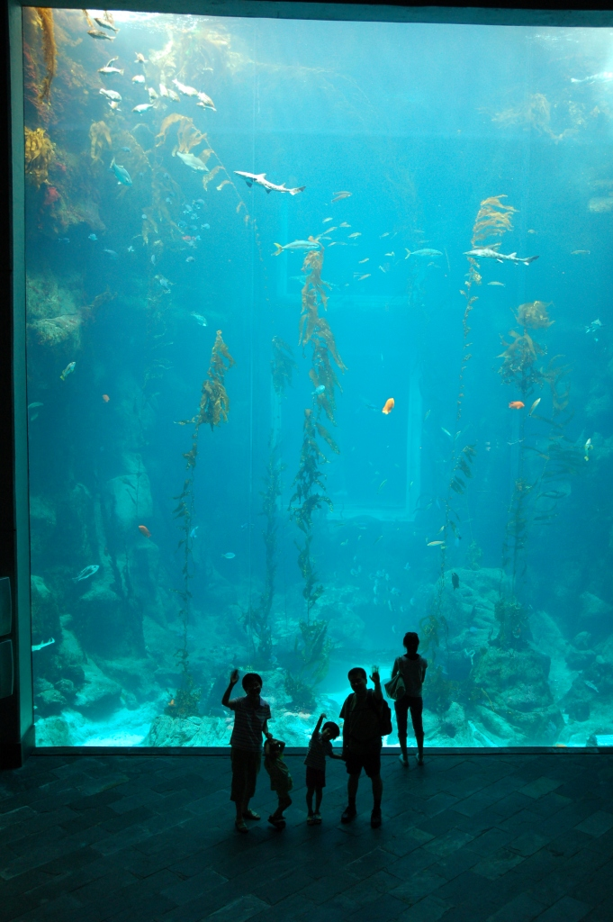 The National Museum of Marine Biology and Aquarium in Ken-Ting National Park, Pingtung